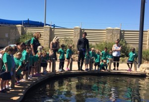 Pre-Primary/Year 1 Excursion to AQWA